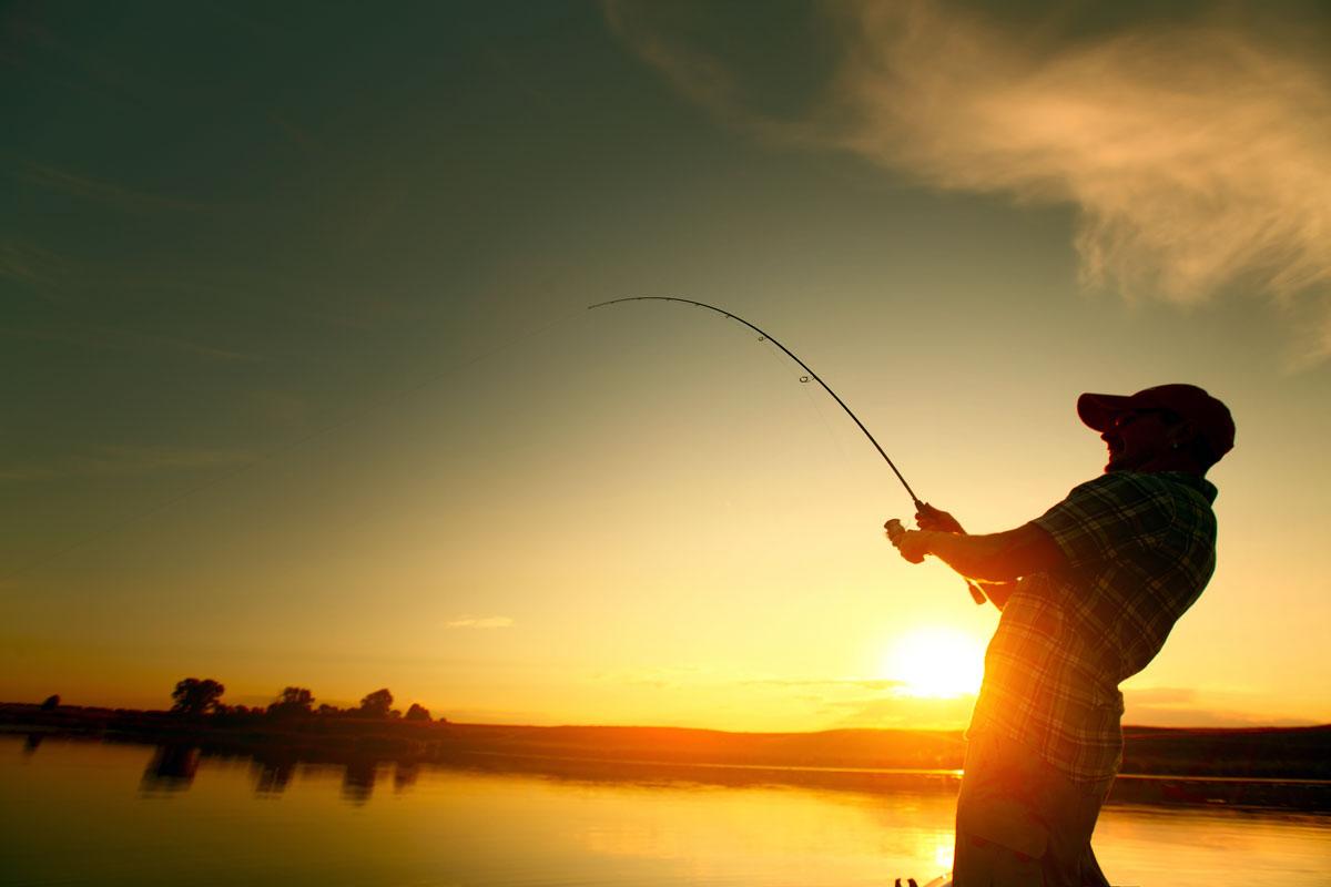 Sunset Fish Catching